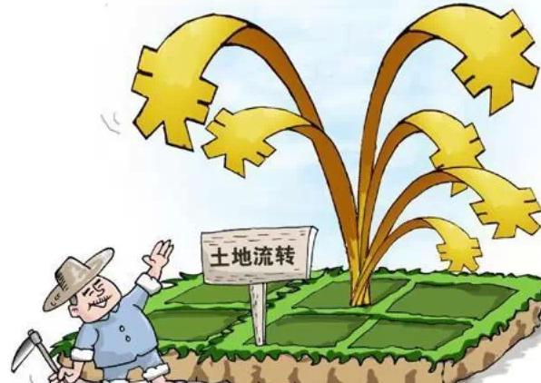 【土地承包经营权可以抵押吗】抵押土地经营权 农民拿到350万贷款